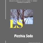 """Primo volume del Giornale Scolastico """"PICCHIA SODO"""""""